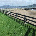 Rathmullan Beach Clean Up